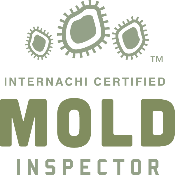 Mold Inspection and Testing Internachi Certified